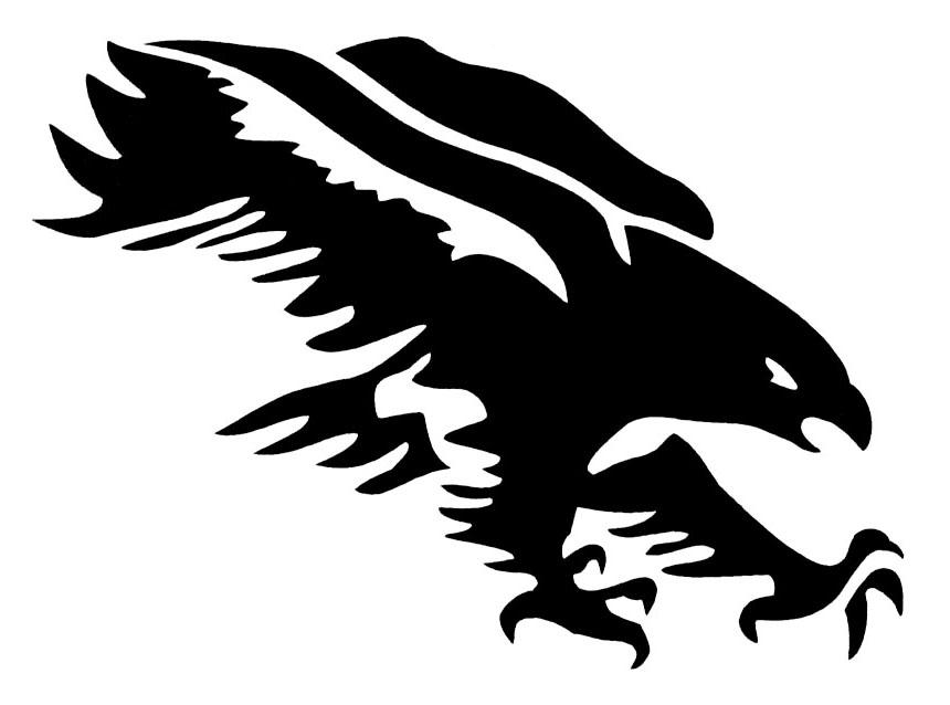 Falcons logo